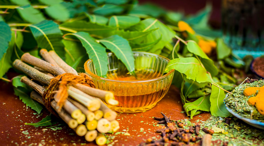 5 Ways to Use Neem for Dental Health